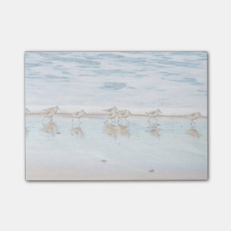 Sandpipers Running Along The Beach Post-it® Notes