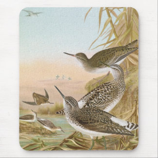 """Sandpipers"" Vintage Bird Illustration Mouse Pad"
