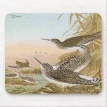 """Sandpipers"" Vintage Bird Illustration Mousepad"