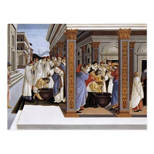Sandro Botticelli- Baptism of St Zenobius Postcard