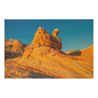 Sandstone Formations At The White Pocket 3 Wood Wall Decor