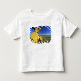 Sandstone Monument in the Hell Creek area near Toddler T-Shirt