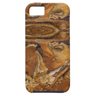 sandstone rock pattern iPhone 5 cases