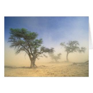 Sandstorm In Kalahari Desert, Kgalagadi Card