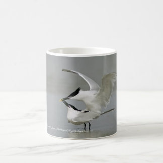 Sandwich Terns on Texas Coast Coffee Mug