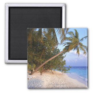 Sandy Beach 10 Magnet