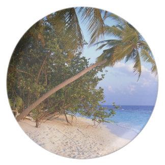 Sandy Beach 10 Plate