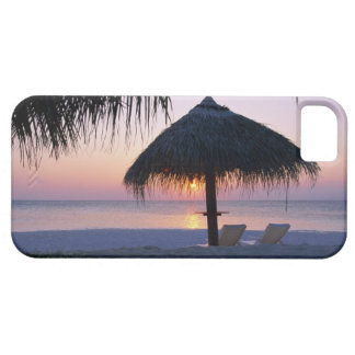 Sandy Beach 6 Case For The iPhone 5