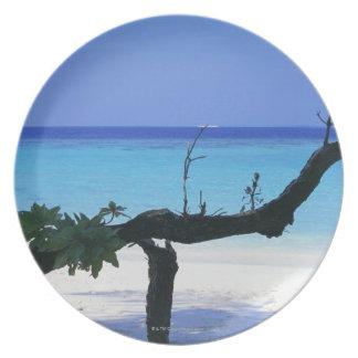 Sandy Beach 8 Plate