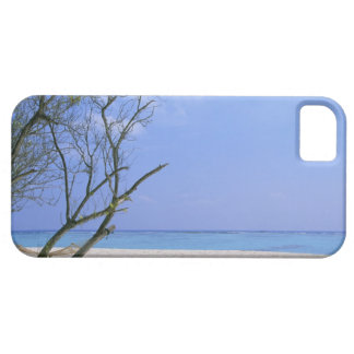 Sandy Beach 9 Case For The iPhone 5