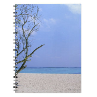 Sandy Beach 9 Notebook