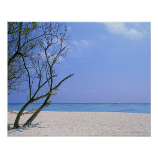 Sandy Beach 9 Poster