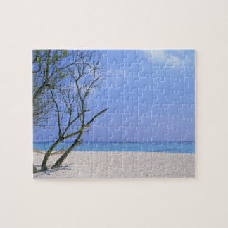 Sandy Beach 9 Puzzle
