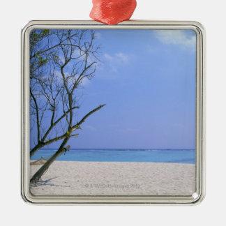 Sandy Beach 9 Silver-Colored Square Decoration