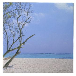 Sandy Beach 9 Tile
