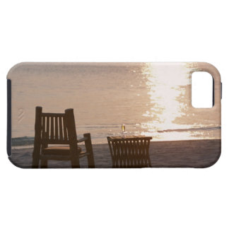 Sandy Beach of Sunset 2 Case For The iPhone 5