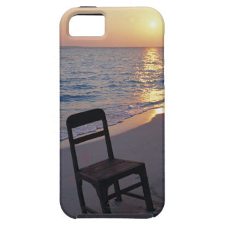 Sandy Beach of Sunset iPhone 5 Covers
