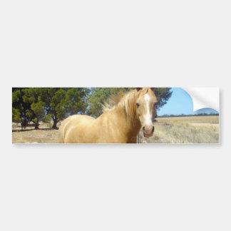 Sandy_Brown_Horse,_ Bumper Sticker
