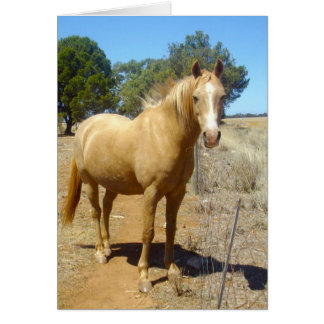 Sandy_Brown_Horse,_Greeting_Card Greeting Card