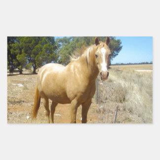Sandy_Brown_Horse,_ Rectangular Sticker