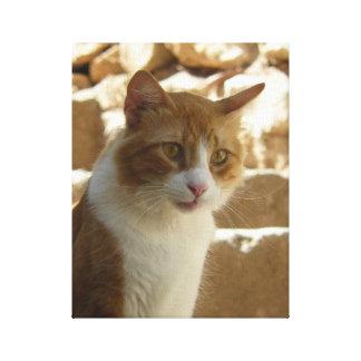Sandy Calico Cat Portrait, 11x14 canvas
