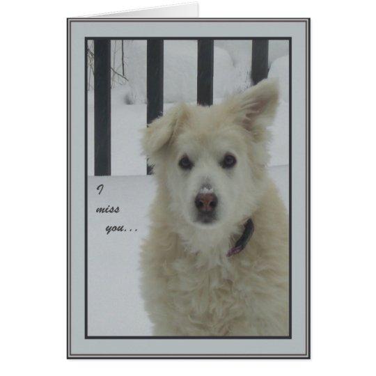 *Sandy Dog - I Miss You Card