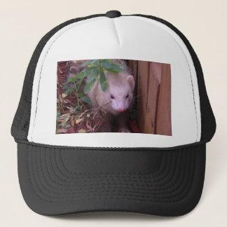 Sandy Ferret Trucker Hat