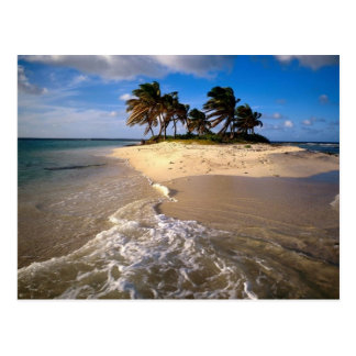 Sandy Island Anguilla Caribbean Postcard