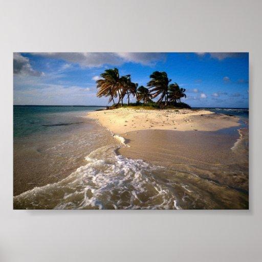 Sandy Island, Anguilla, Caribbean Posters
