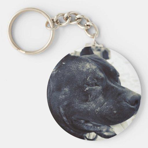 Sandy Pit Bull Keychains