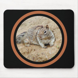 Sandy Squirrel - Multi Frame Mouse Pad