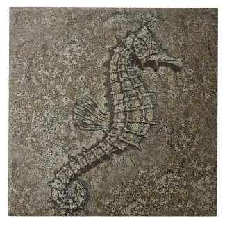 Sandy Textured Seahorse Photograph Tile