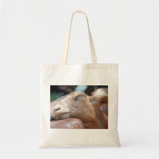 Sandy The Goat - Nap Time! Budget Tote Bag