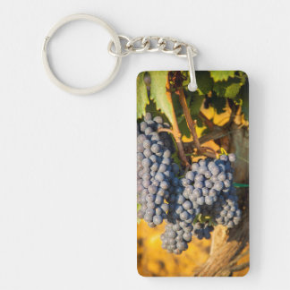 Sangiovese grapes in a vineyard key ring