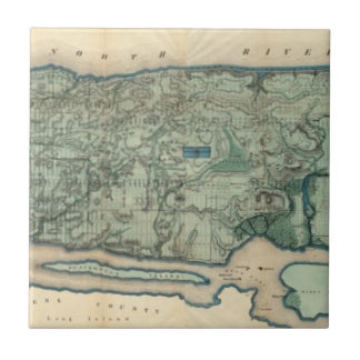 Sanitary and Topographical Map of New York City Tile