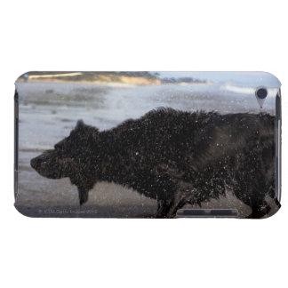 Santa Barbara, California, USA Barely There iPod Covers