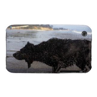 Santa Barbara, California, USA iPhone 3 Case-Mate Case