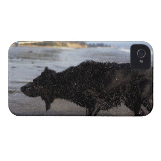 Santa Barbara, California, USA Case-Mate iPhone 4 Cases