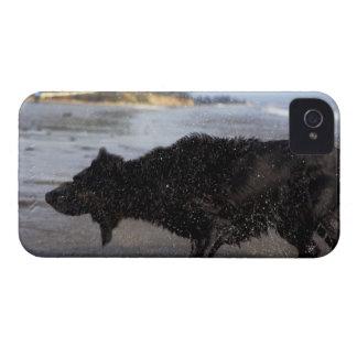 Santa Barbara, California, USA iPhone 4 Covers