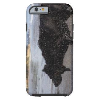 Santa Barbara, California, USA Tough iPhone 6 Case