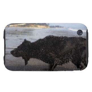 Santa Barbara, California, USA Tough iPhone 3 Covers