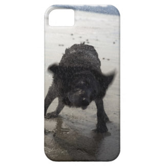 Santa Barbara, California, USA iPhone 5 Covers