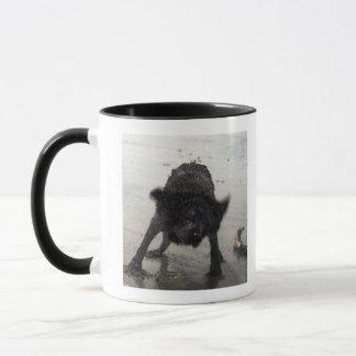 Santa Barbara, California, USA Mug