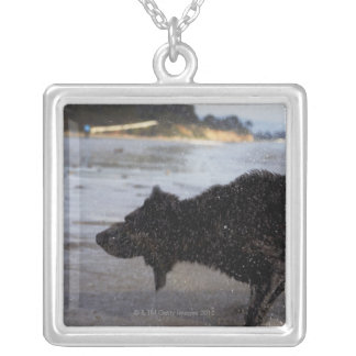 Santa Barbara, California, USA Silver Plated Necklace