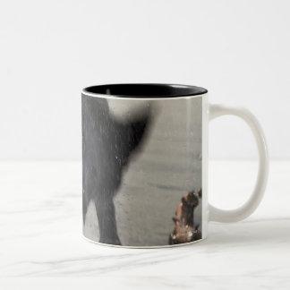 Santa Barbara, California, USA Two-Tone Coffee Mug