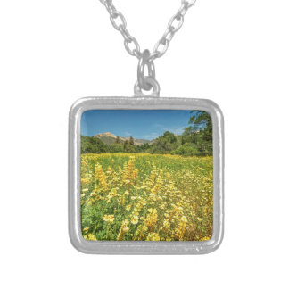 Santa Barbara Wildflowers Jewelry