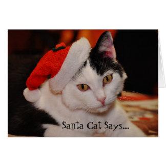 Santa Cat Lover Fun Christmas Card