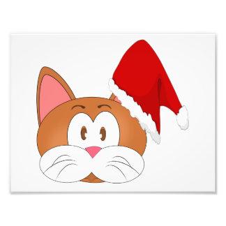 Santa Cat Photograph