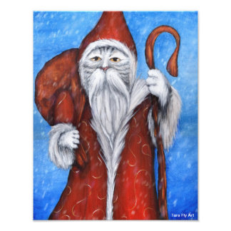 Santa Cat, St Nicholas Kitty Christmas Card Photo