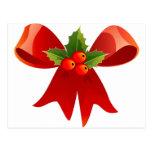 Santa Christmas Winter December Peace Love Destiny Postcard